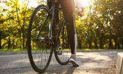 Автомобил уби велосипедист в Пазарджик