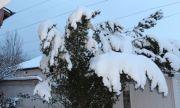Спряха тролейбусите в Хасково заради авария