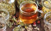 Най-добрите билки за силен имунитет през есента