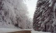 Първи сняг на
