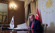 Албанци възпяха Реджеп Ердоган