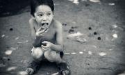 3 милиарда души не могат да си позволят здравословна храна