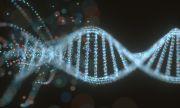 Учени обърнаха процеса на стареене у хора