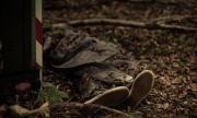 Зловеща находка в София! Откриха труп на мъж със следи от насилие по него