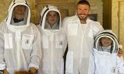 Дейвид Бекъм има нова мания - пчели