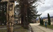 Пуснаха безплатен интернет на обществените места в Берковица