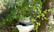 23-годишен разби лек автомобил в дърво във Видинско посред нощ