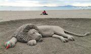 Лъв изненада бургазлии на плажа (СНИМКИ)