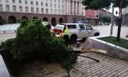Десетки сигнали за щети от бурята в София снощи