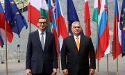 ЕС готви условия за Унгария и Полша