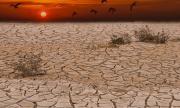 Необичайни дъждове и наводнения в района на Сахел в Африка