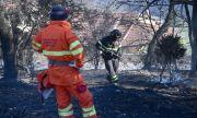 Защо Италия не може да се справи с пожарите