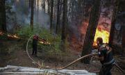 ЕК изпраща три самолета за гасене на пожари в Турция