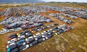 18 хил. коли под наем чакат края на епидемията в тръстиково поле