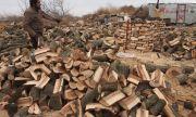 По-скъпи дърва и пелети през тази зима