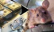 Човекоядците-мишлета позорно се скриха при парите си