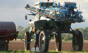 11 юни – последен ден, в който фермерите могат да подадат заявления за директни плащания