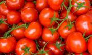 Как да запазим доматите свежи