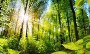 Нов доклад сочи наличие на нестихващ натиск върху природата в Европа