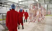 730 души са с коронавирус в кланица в Германия