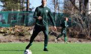 Златан Ибрахимович започна тренировки с отбор в Швеция