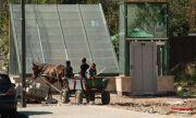 Проучване: Ромската неграмотност спада