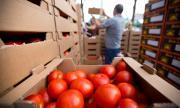 Хиляди французи започват работа в земеделието