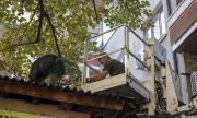 Спасиха еднометрова игуана в Стара Загора