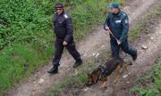 Откриха група нелегални мигранти в гора край София