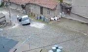 Кола пропадна в кратер след ремонт в центъра на Велико Търново (ВИДЕО)