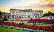 Бъкингамският дворец пуска своя марка джин с трънки от България (СНИМКА)