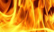 Заради силен вятър: Пожарът край село Виден се разпали отново