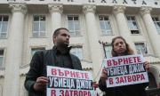 От ВСС за освобождаването на Полфрийман: Не можем да се намесим
