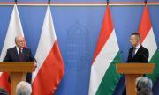Унгария и Полша основават институт за върховенство на закона