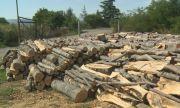 Цената на един кубик дърва скочи до 100 лв.