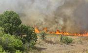 Кметът на Перник: Пожарът е локализиран