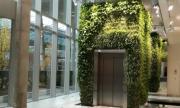 Идеи за озеленяване - екологичното и естетическо решение за интериора и екстериора