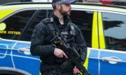 Британка обвини шейх в изнасилване