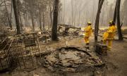Горските пожари в САЩ продължават да взимат жертви