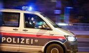 Професионалисти донесоха ужаса във Виена