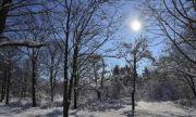 Мразовита събота