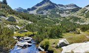 Експерти: Българските национални паркове са по-атрактивни от швейцарските