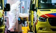 Пандемията: 308 000 заразени и над 13 000 починали