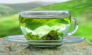 Зеленият чай спасява от...