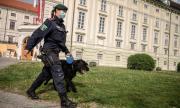 Европа бавно се съвзема от пандемията
