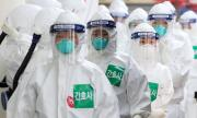 Учени идентифицираха антитела, неутрализиращи коронавируса