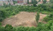 Борис Цветков: Защо СО разреши изсичане на гора в