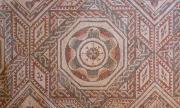 Уникални римски мозайки бяха открити в лозе