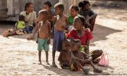 Трагедия в Мадагаскар: ядат кожа, трева и хлебарки