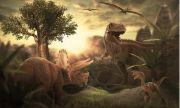 Стана ясно какъв е бил климатът по време на динозаврите